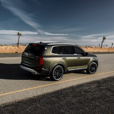 2020 Kia Telluride Rear Side Profile
